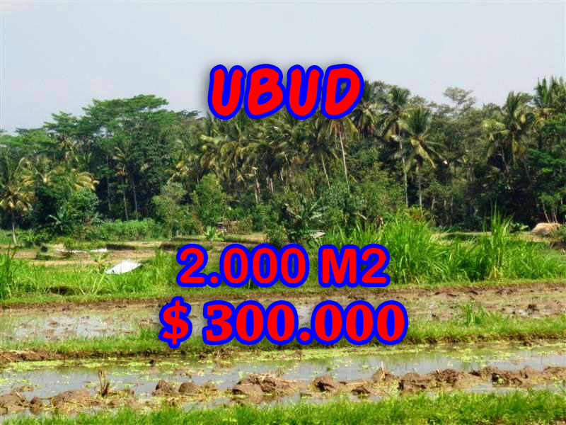 Land for sale in Ubud Bali, Wonderful view in Ubud Tampak siring – TJUB267