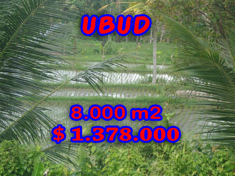 Land for sale in Ubud Bali, Gorgeous view in Ubud Tampak Siring – TJUB277