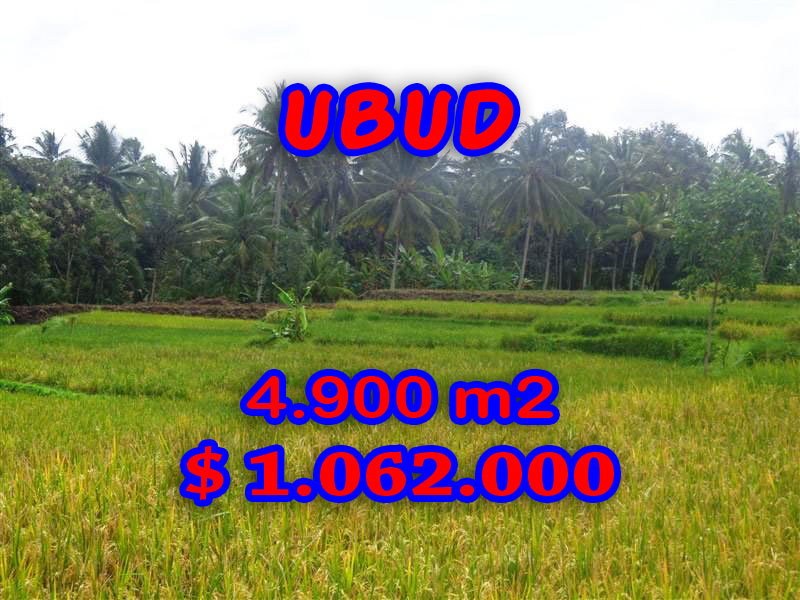 Land for sale in Ubud, Fantastic view in Ubud Center Bali – TJUB278