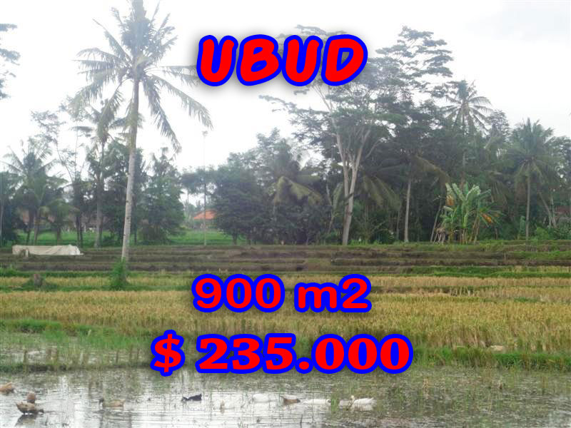 Land in Ubud for sale, Amazing view in Ubud Center Bali – TJUB280
