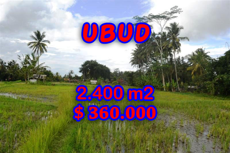 Exotic Property in Bali, Land for sale in Ubud Bali – 2.400 sqm @ $ 150