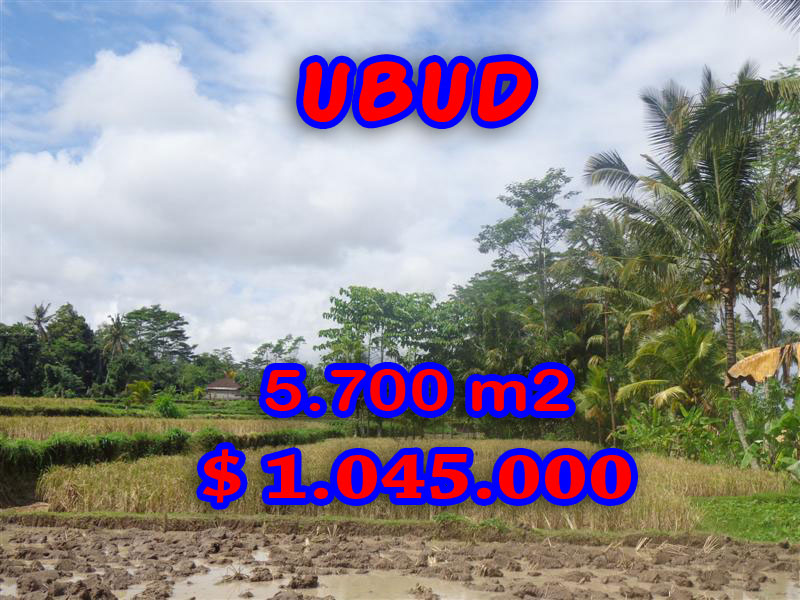 Land for sale in Bali, Exotic view in Ubud Bali – 5.700 sqm @ $ 183
