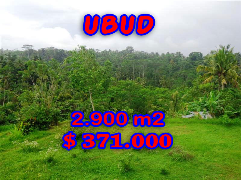 Incredible Property in Bali, Land in Ubud Bali for sale – 2,900 sqm @ $ 128