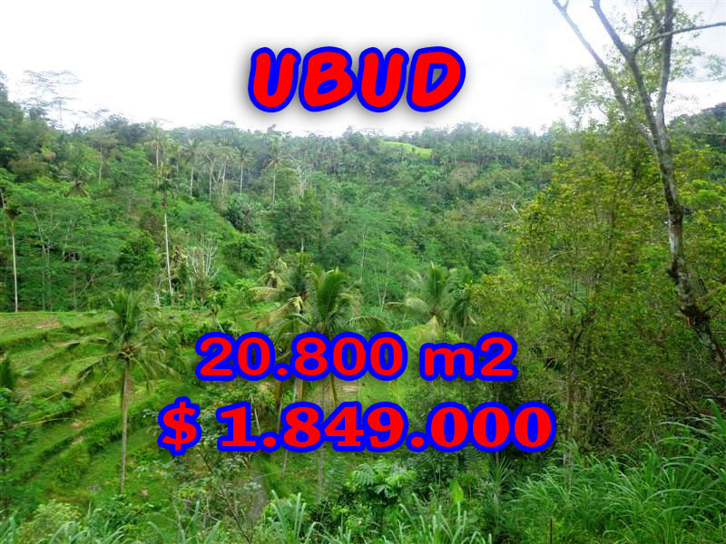 Amazing Property in Bali, Land for sale in Ubud Bali – 20,800 sqm @ $ 89