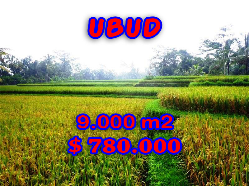 Land for sale in Bali, Fabulous view in Ubud Bali – 9.000 sqm @ $ 87
