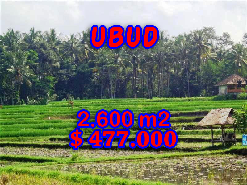 Land for sale in Bali, Beautiful view in Ubud Bali – 2.600 sqm @ $ 183