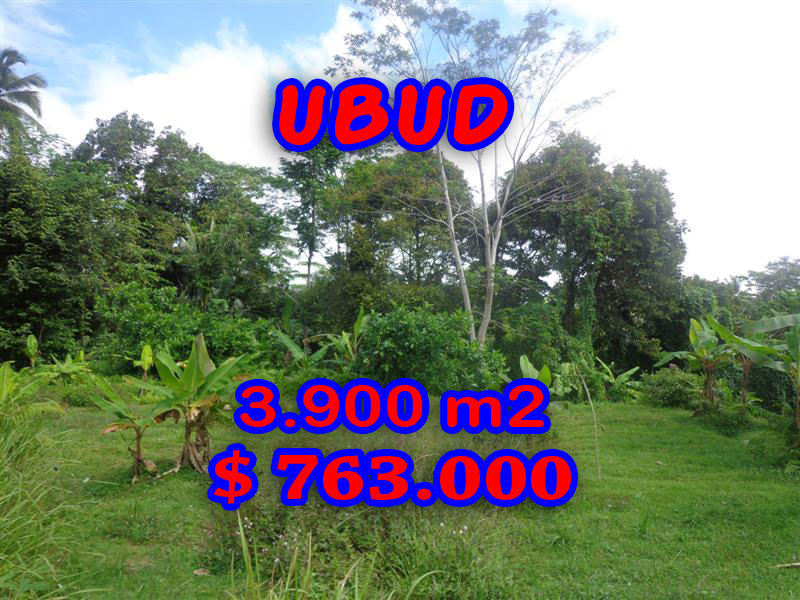 Astounding Property for sale in Bali, Land in Ubud for sale– 3.900 sqm @ $ 196