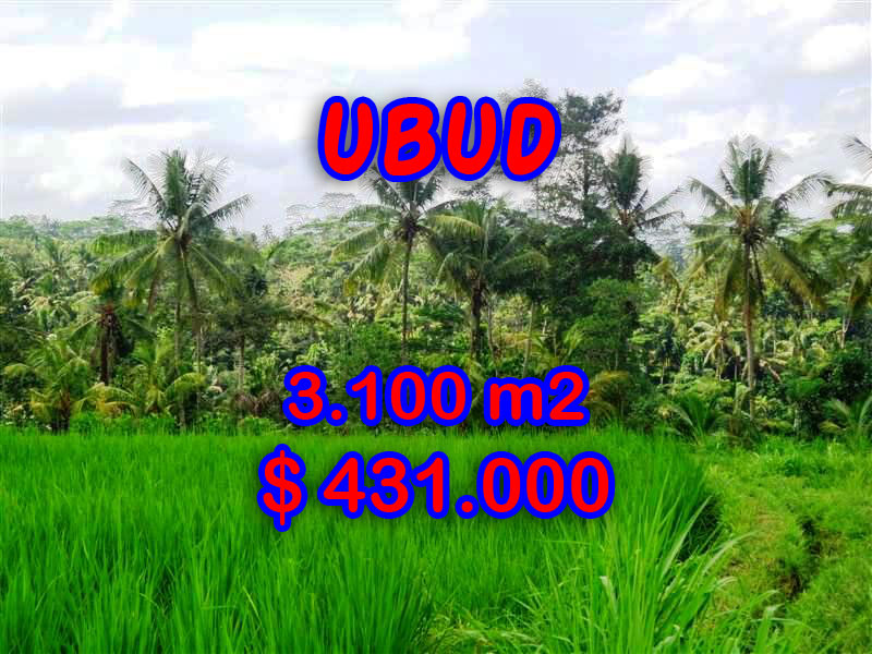 Land for sale in Bali, Amazing view in Ubud Bali – 3.100 sqm @ $ 139