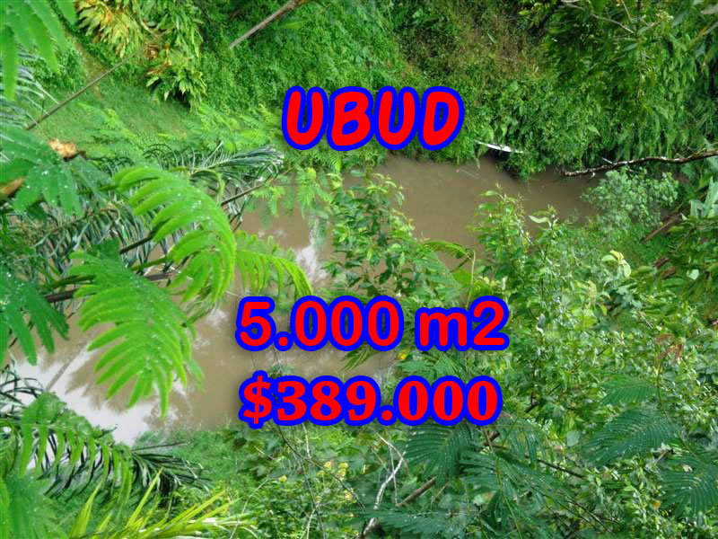 Exotic Property in Bali, Land for sale in Ubud Bali – 5.000 sqm @ $ 78