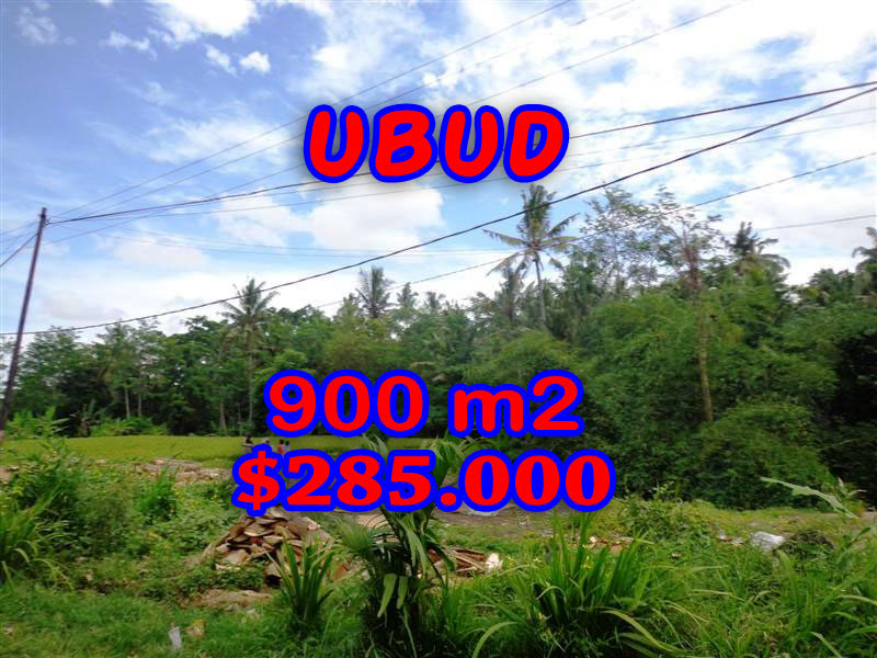 Terrific Property in Bali, Land for sale in Ubud Bali – 900 sqm @ $ 317