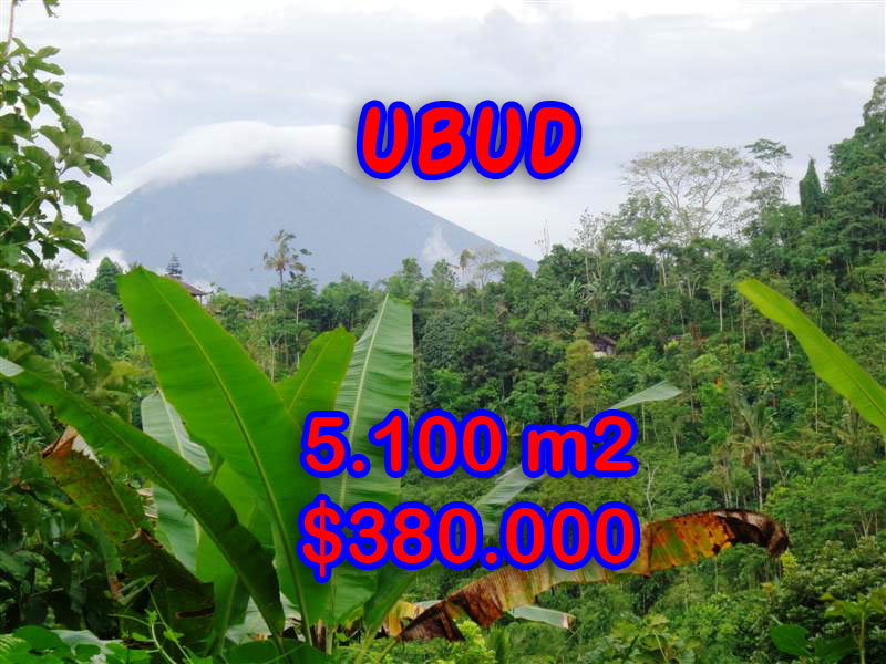 Land for sale in Bali, Exceptional property in Ubud Bali – 5.100 sqm @ $ 74