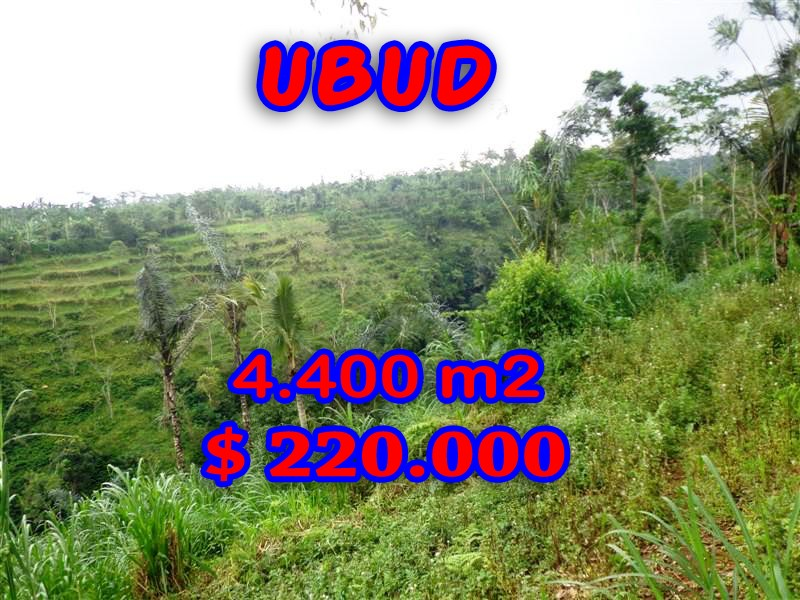 Exceptional Property in Bali, Land for sale in Ubud Bali – 4.400 sqm @ $ 50