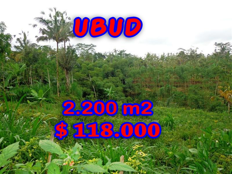 Incredible Property in Bali, Land in Ubud Bali for sale – 2.200 sqm @ $ 53