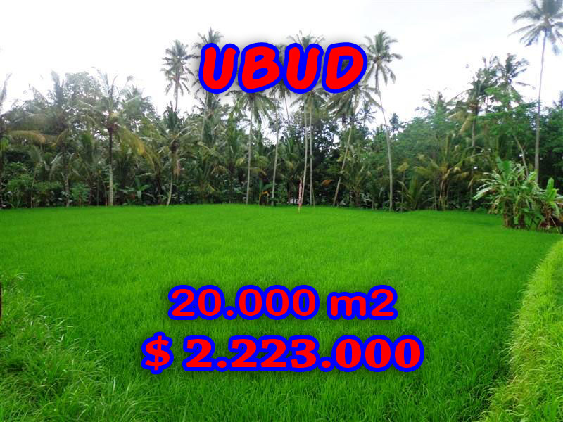 Interesting Land for sale in Ubud Bali, paddy view By the river valley in Ubud Pejeng– TJUB286