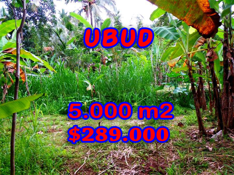 Astounding Property for sale in Bali, Land in Ubud for sale– 5.000 sqm @ $ 58