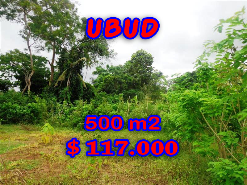 Land for sale Ubud Bali Spectacular view in Ubud Center – TJUB283