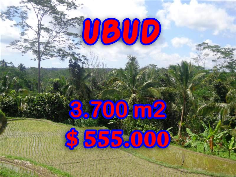 Land for sale in Ubud Bali, Astounding view in Ubud Tegalalang – TJUB293