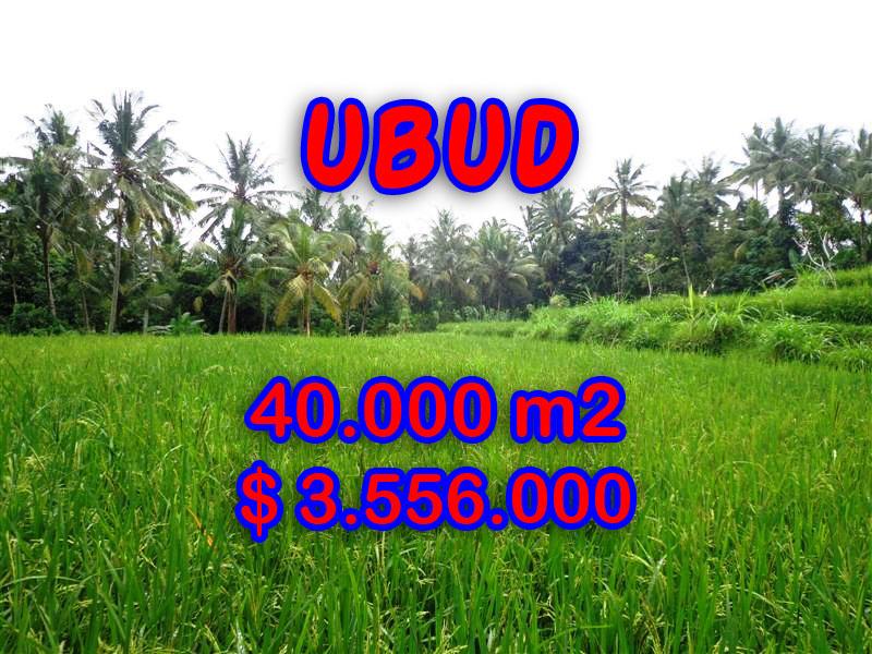 Land for sale in Ubud, Amazing view in Ubud Tampak siring Bali – TJUB269