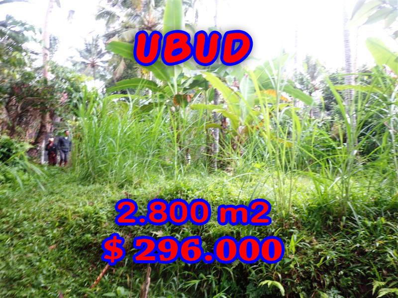 Land in Ubud for sale, Stunning view in Ubud Tampak Siring Bali – TJUB285