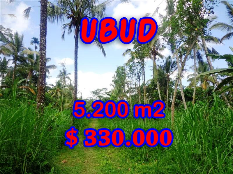 Fantastic Land for sale in Ubud Bali, rice fields and river valley view in Ubud Tegalalang– TJUB296