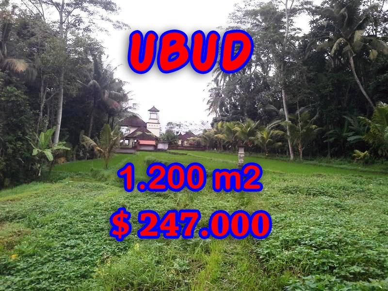 Land for sale in Ubud Bali, Magnificent view in Ubud Tegalalang – TJUB297