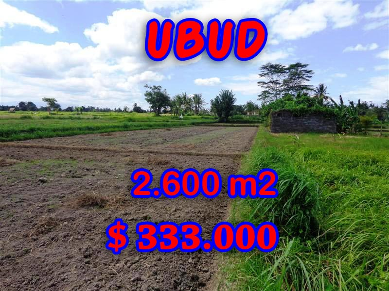 Land for sale in Bali, Exotic view in Ubud Bali – 2,600 sqm @ $ 128