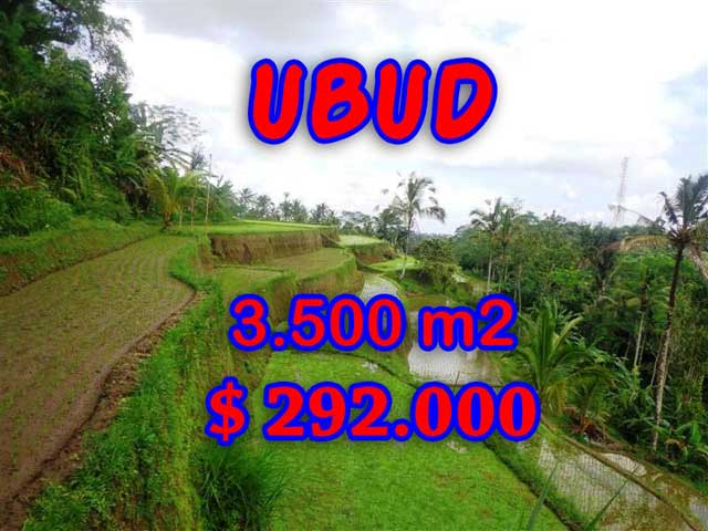 Astonishing Property in Bali, Land in Ubud Bali for sale – 3,500 sqm @ $ 83