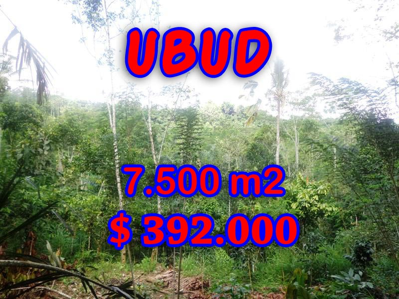 Land in Ubud for sale, Outstanding view in Ubud Tegalalang Bali – TJUB290