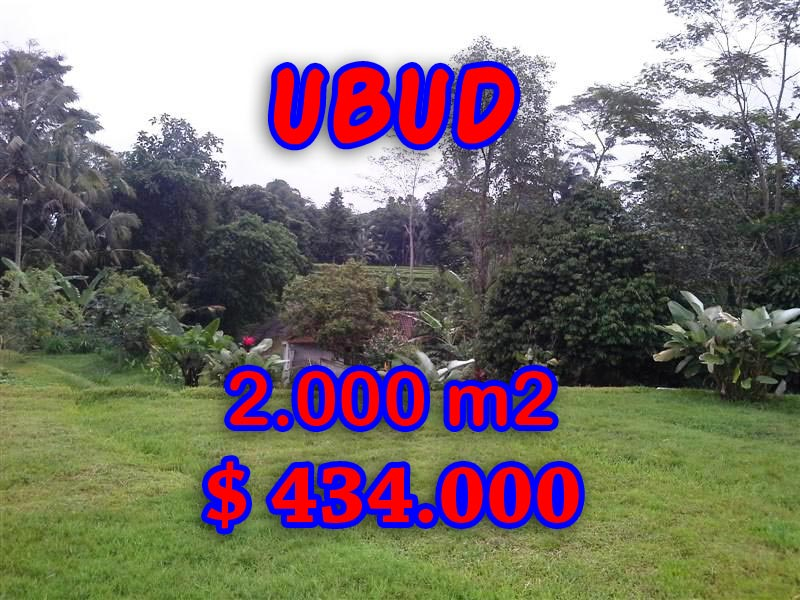 Attractive Property in Bali, Land sale in Ubud Bali – 2,000 sqm @ $ 217