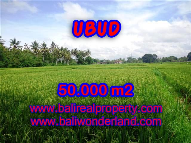 Extraordinary Land for sale in Ubud Bali, paddy view by the river in Central Ubud – TJUB351