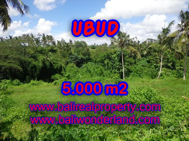 Land for sale in Ubud Bali, Astounding view in Central Ubud – TJUB353