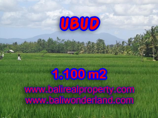 Land in Ubud Bali for sale, Exotic view in Central Ubud – TJUB354