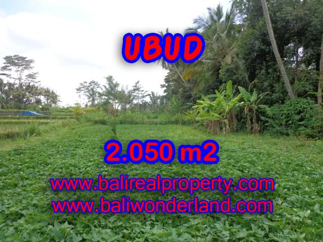 Land in Ubud Bali for sale, Outstanding view in Ubud Pejeng – TJUB344