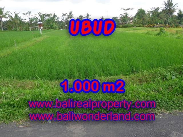 Land in Ubud for sale, Stunning view in Ubud Tampak siring Bali – TJUB345