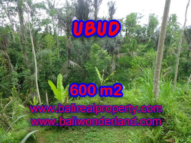Interesting Land for sale in Ubud Bali, paddy field view in Ubud Tegalalang– TJUB346