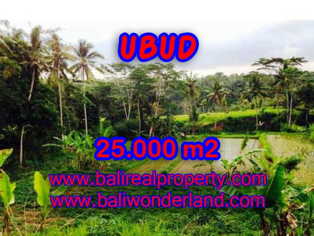 Land in Ubud for sale, Outstanding view in Central Ubud Bali – TJUB350