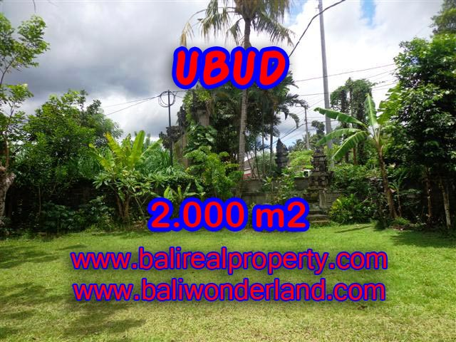 Land for sale in Bali, wonderful view in Ubud Bali – TJUB367