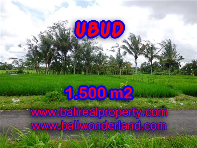 Exceptional Property in Bali, land for sale in Ubud Bali – TJUB369