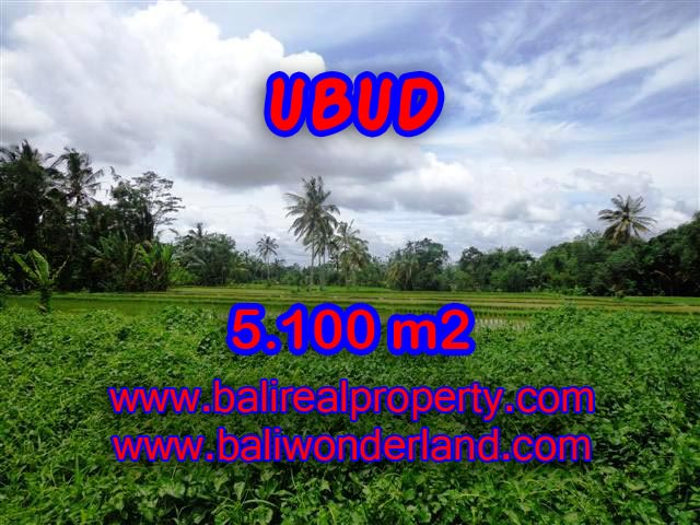 Magnificent Property in Bali for sale, land in Ubud Bali for sale – TJUB368