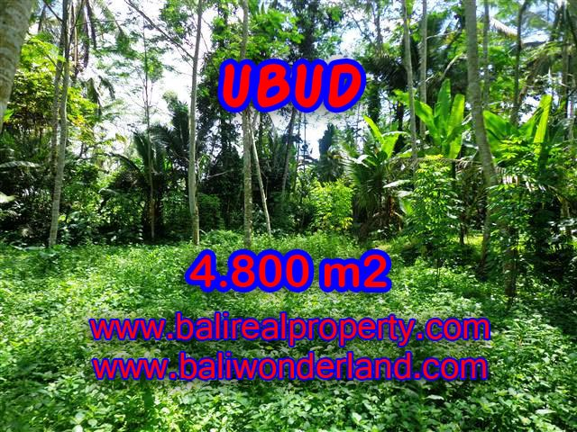 Land for sale in Ubud, Stunning view in Ubud Tegalalang Bali – TJUB382
