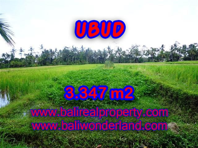 Exotic LAND FOR SALE IN UBUD Bali, green valley and river view in Ubud Center– TJUB380