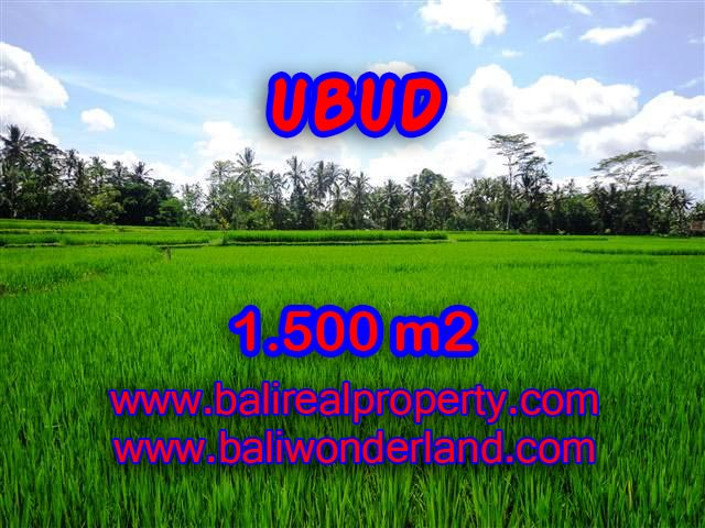 Land in Ubud Bali for sale, Outstanding view in Ubud Center – TJUB383