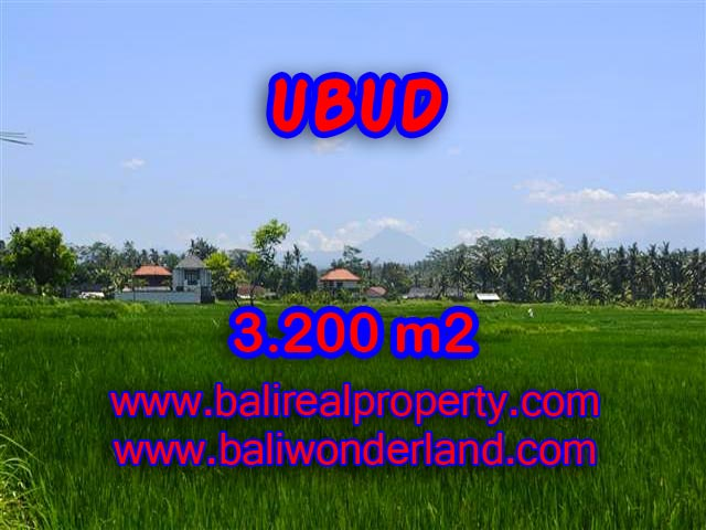 Interesting Land for sale in Ubud Bali, ricefields and mountain view in Ubud Center – TJUB385
