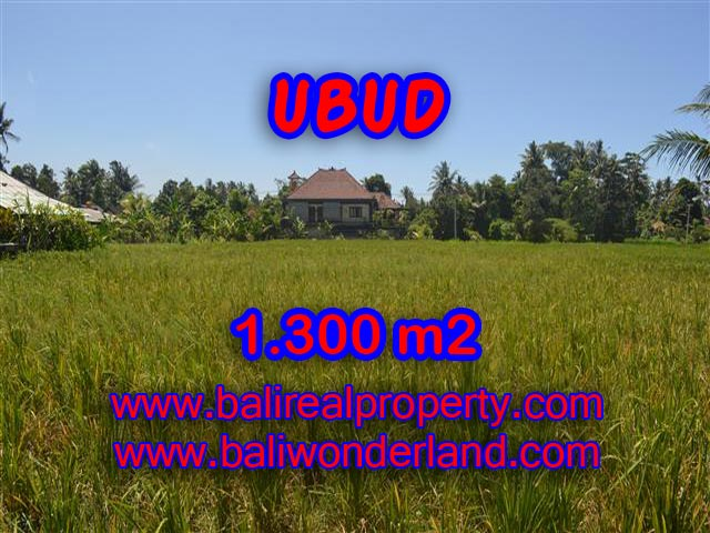 Land for sale in Ubud Bali, Wonderful view in Ubud Center – TJUB386