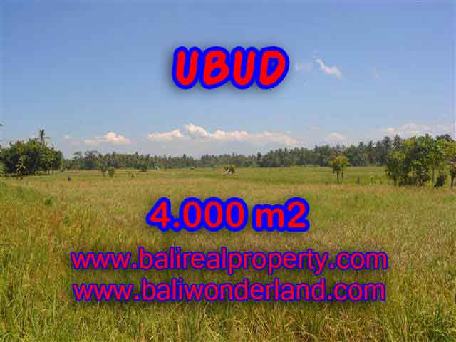 Land for sale in Ubud, Magnificent view in Ubud Center Bali – TJUB387