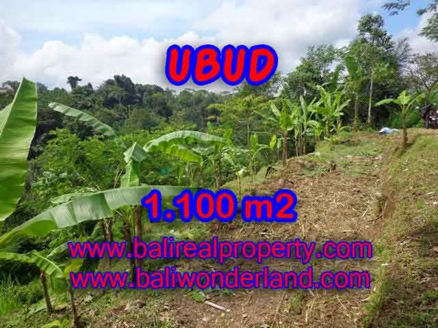 Land for sale in Bali, wonderful view in Ubud Bali – TJUB407