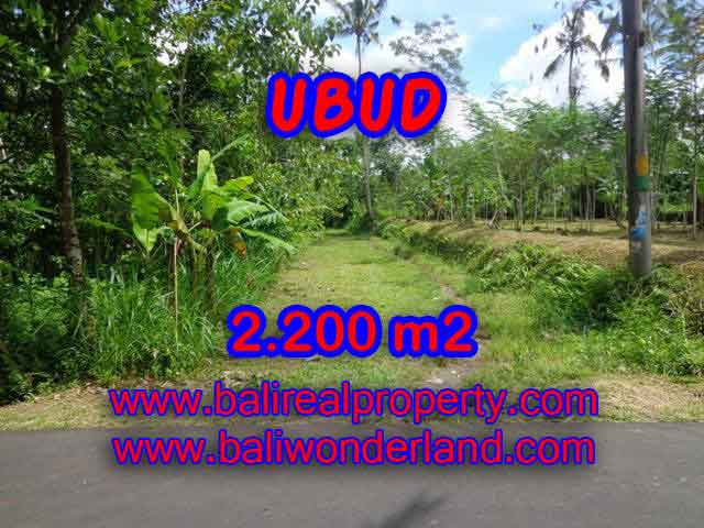 Land in Bali for sale, great view in Ubud Bali – TJUB408