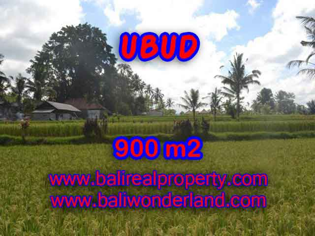 Outstanding Property for sale in Bali, land for sale in Ubud Bali – TJUB412