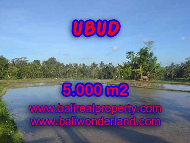 Wonderful Property in Bali for sale, land in Ubud Bali for sale – TJUB413