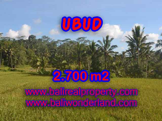 Outstanding Property in Bali for sale, land in Ubud for sale – TJUB414